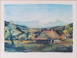 Nr. 2538 Landschaft