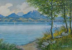 Nr.2503  Am Seeufer (Lac Gruyère?)