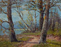 Nr.847 Uferweg