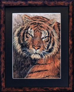 Nr. 0544 Tiger