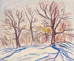 Nr. 3453 Bäume in der Wintersonne
