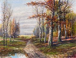 Wald bei Bad Ragaz