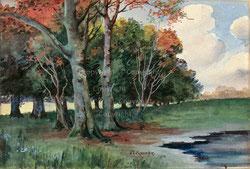 Nr. 3528  Baumlandschaft 2