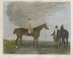 "Nr.1908;  ""Albert"" (vermutlich Prinz Albert, England)"