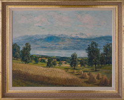 Nr. 2849 Sommer am Zürichsee ob Stäfa