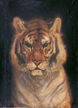 Nr.655 Königstiger anno 1888
