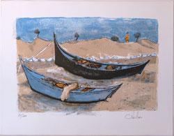 Nr. 2821 Les Barques aux St.-Maries