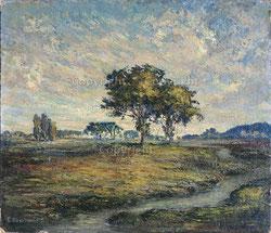 Nr.2191 Moorlandschaft mit Bäumen