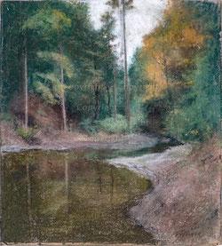 Nr. 2897 Waldlandschaft
