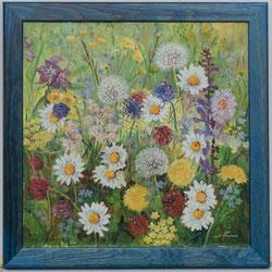 Nr. 1335  Blumenwiese