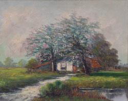 Nr. 887 Haus im Frühling