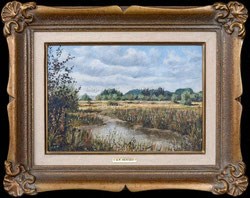 Nr. 3473 Sumpflandschaft