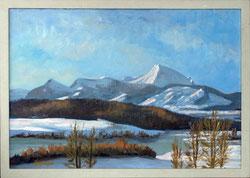 Nr. 3474 Moleson im Winter