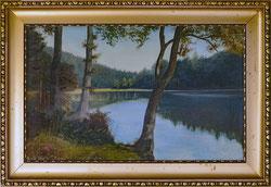 Nr.2954 étang de gruère