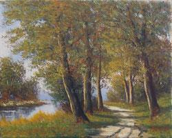 Nr. 1049 Uferweg