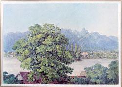 Thun, 11.7.1847 (Stockhorngruppe)