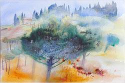 Nr.1988;  Toscana-Landschaft