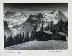 Nr.3295 Fiescherhorn-Eiger
