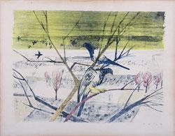 Nr. 824 Tauben