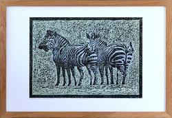 Nr. 3349 Zebras