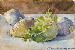 Nr.3237 Salat und Gemüse