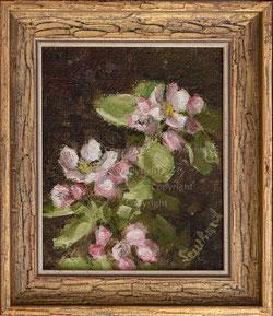 Nr. 3398 Apfelblüten