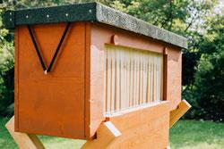 BienenBox von Stadtbienen eV.