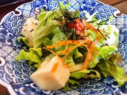 野歩ほんサラダ呉豆腐サラダ