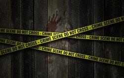 voir d'autres romans policiers et thrillers