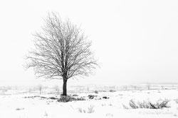 Winter Landschaften