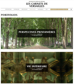 http://www.lescarnetsdeversailles.fr/