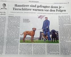 Hildesheimer Allgemeine berichtet über Hundeschule Simsammlerbim