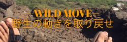 WILD MOVE 野生の動きを取り戻せ