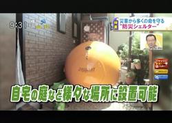 TOKYOMXテレビ14のバラいろダンディで津波シェルター放映