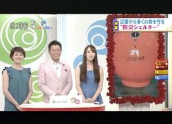 TOKYOMXテレビ44のバラいろダンディで津波シェルター放映