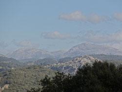 """Naturschutzpark """"Los Alcornocales"""""""