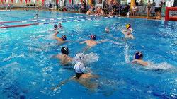 Hallenwassersport soll schon bald wieder möglich sein. Foto: Tobias Brodda