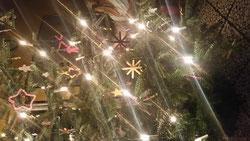 Jedes Jahr leuchtet während der Adventszeit ein von den Klassen geschmückter Tannenbaum in der Eingangshalle.