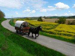 Vacances itinérantes en roulotte tirée par un cheval