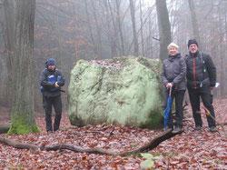 Die Inschrift des Steines sollte gerade die Forstwirschaft beherzigen!