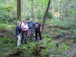 Sumpfland im Stumpfwald