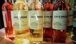 Cape Bridge 2021