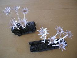 Edelweis Blume geschnitzt