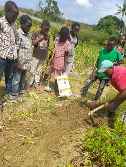 Unter der Anleitung von Koch Felix lernen die Kinder, wie man Mais anbaut.
