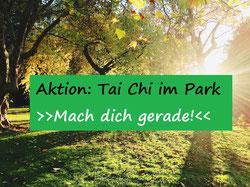 Tai Chi im Park Mach dich gerade!