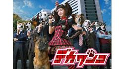 ドラマ「デカワンコ」(日本テレビ)