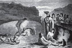 Las gallinas llegaron con los colonizadores polinesios. Grabado de Pierre Loti (Julián Viaud), 1872