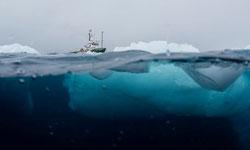 Las muestras fueron recolectadas durante una expedición de tres meses a la Antártida a bordo del barco de Greenpeace, Arctic Sunrise, de enero a marzo de 2018. Por: Christian Åslund / Greenpeace