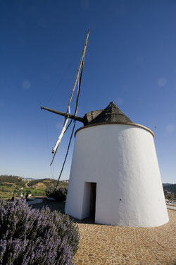 Ruta Ingenios del Aire: Molinos de viento en la comarca onubense del Andévalo. Molino de viento, El Almendro (Huelva). Foto IAPH