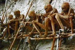Momias de los kukukuku expuestas en la galería. / FOTO: Xakata Ciencia